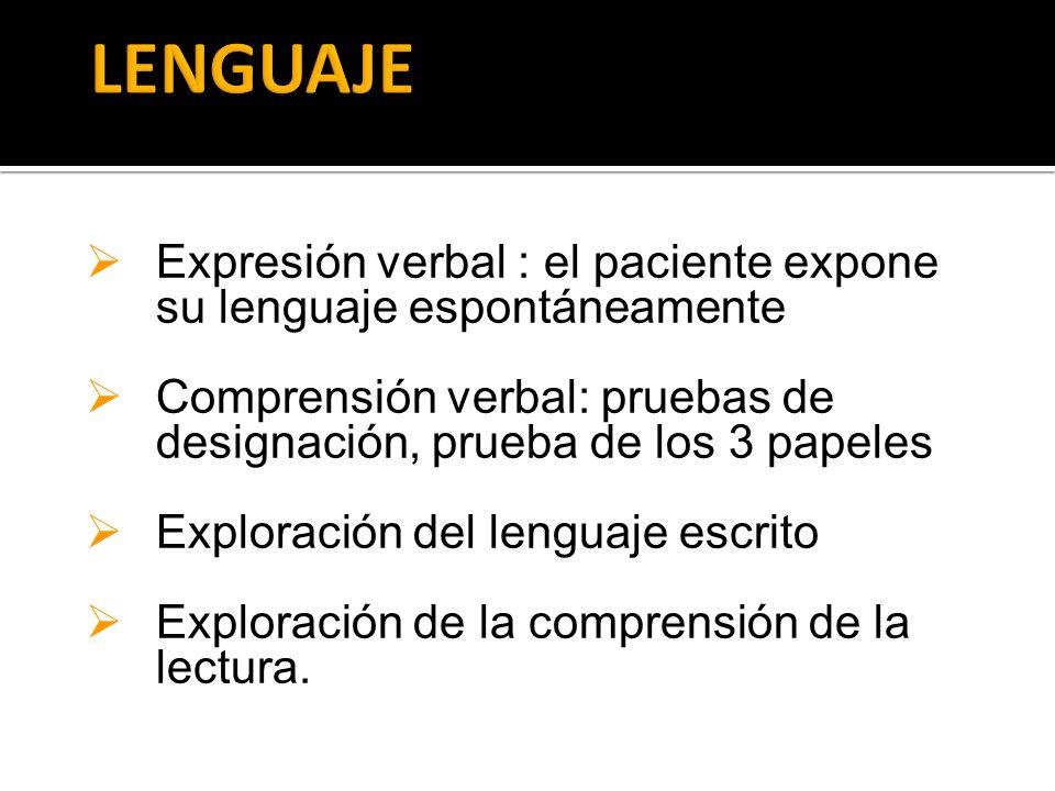 Expresión verbal : el paciente expone su lenguaje espontáneamente Comprensión verbal: pruebas de designación, prueba de los 3 papeles Exploración del