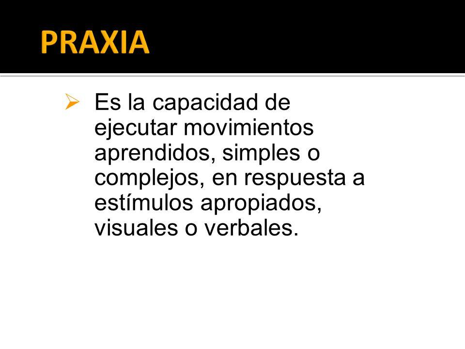 Es la capacidad de ejecutar movimientos aprendidos, simples o complejos, en respuesta a estímulos apropiados, visuales o verbales.