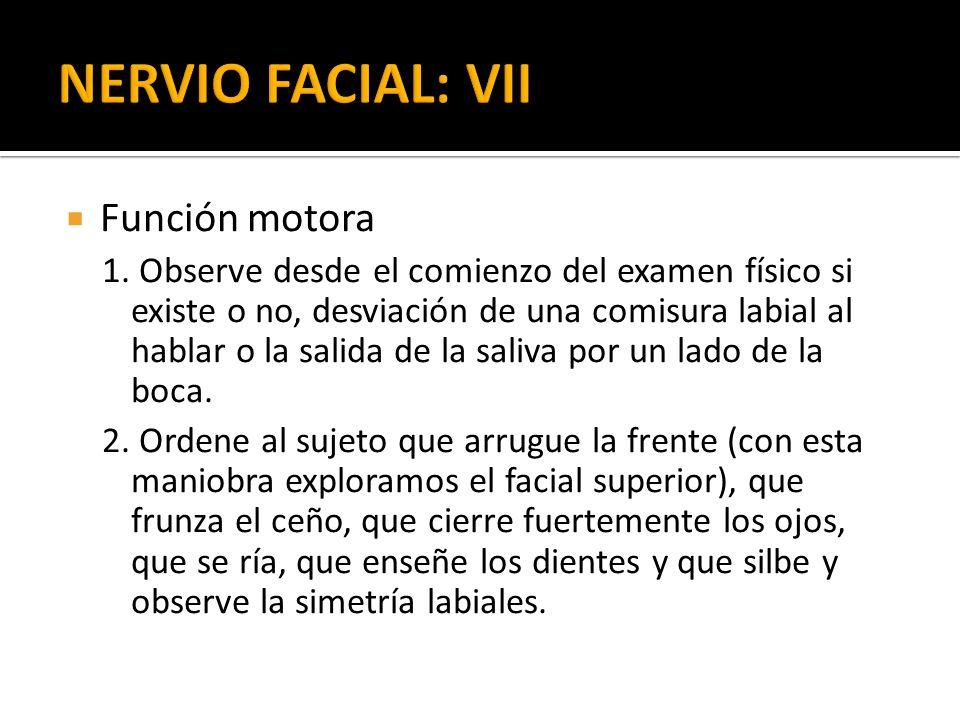 Función motora 1. Observe desde el comienzo del examen físico si existe o no, desviación de una comisura labial al hablar o la salida de la saliva por