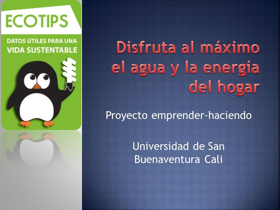 Proyecto emprender-haciendo Universidad de San Buenaventura Cali