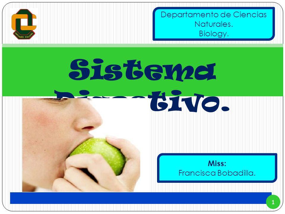 Sistema Digestivo. 1 Miss: Francisca Bobadilla. Departamento de Ciencias Naturales. Biology.