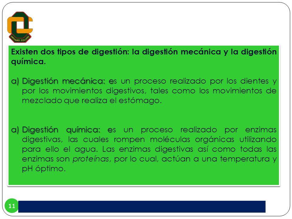11 Existen dos tipos de digestión: la digestión mecánica y la digestión química. a)Digestión mecánica: e a)Digestión mecánica: es un proceso realizado