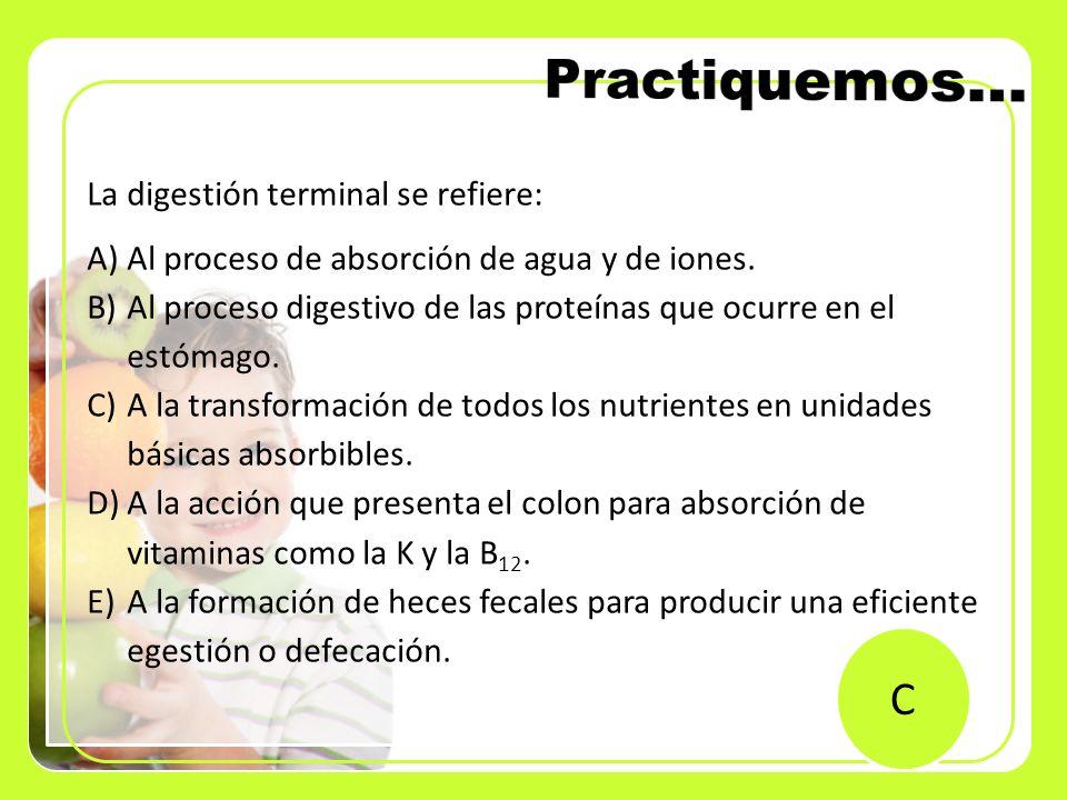 La digestión terminal se refiere: A)Al proceso de absorción de agua y de iones. B)Al proceso digestivo de las proteínas que ocurre en el estómago. C)A