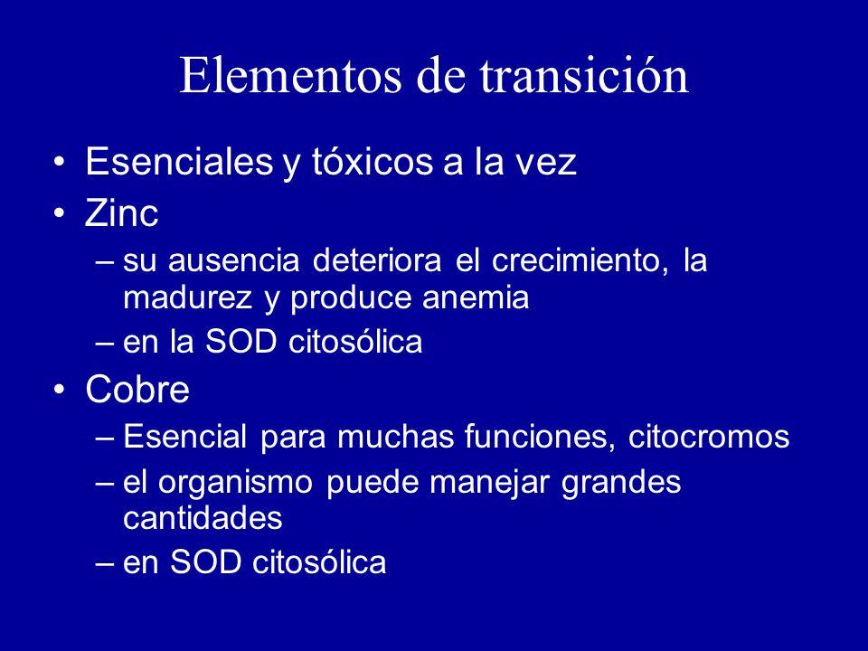 Elementos de transición Esenciales y tóxicos a la vez Zinc –su ausencia deteriora el crecimiento, la madurez y produce anemia –en la SOD citosólica Cobre –Esencial para muchas funciones, citocromos –el organismo puede manejar grandes cantidades –en SOD citosólica
