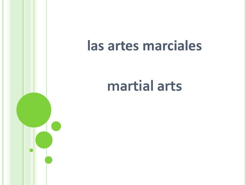 las artes marciales martial arts