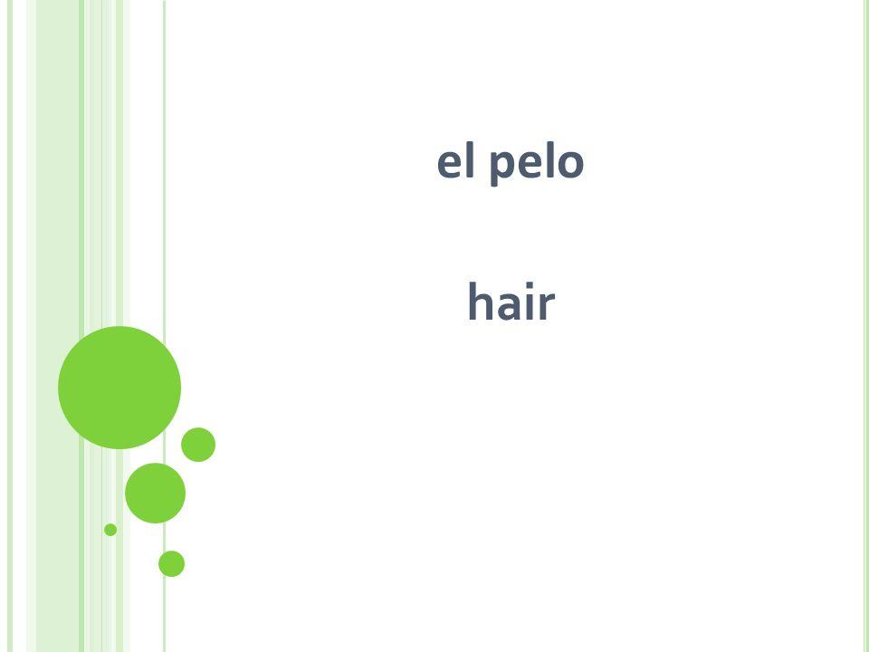 el pelo hair