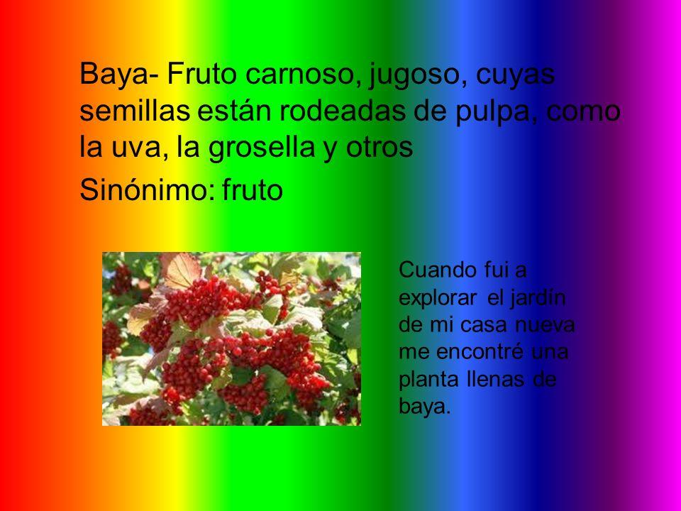 Baya- Fruto carnoso, jugoso, cuyas semillas están rodeadas de pulpa, como la uva, la grosella y otros Sinónimo: fruto Cuando fui a explorar el jardín