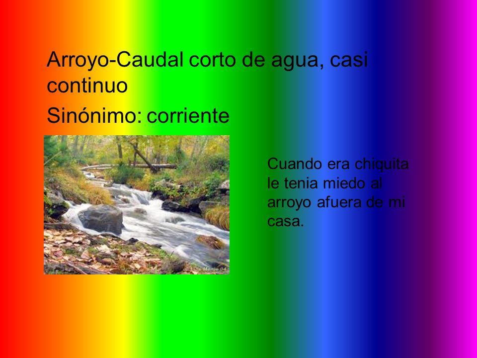 Arroyo-Caudal corto de agua, casi continuo Sinónimo: corriente Cuando era chiquita le tenia miedo al arroyo afuera de mi casa.