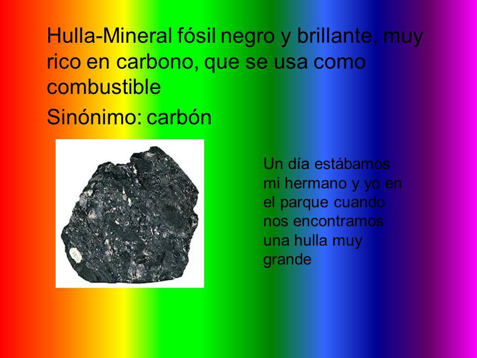 Hulla-Mineral fósil negro y brillante, muy rico en carbono, que se usa como combustible Sinónimo: carbón Un día estábamos mi hermano y yo en el parque