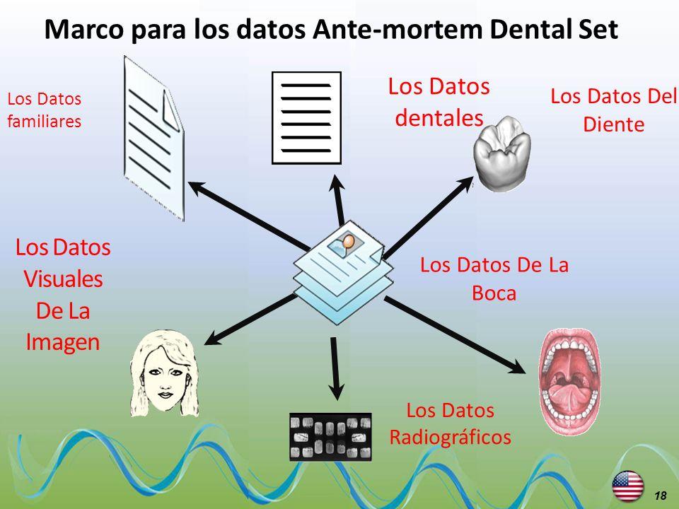 Marco para los datos Ante-mortem Dental Set Los Datos Visuales De La Imagen Los Datos dentales Los Datos Del Diente Los Datos De La Boca Los Datos Rad