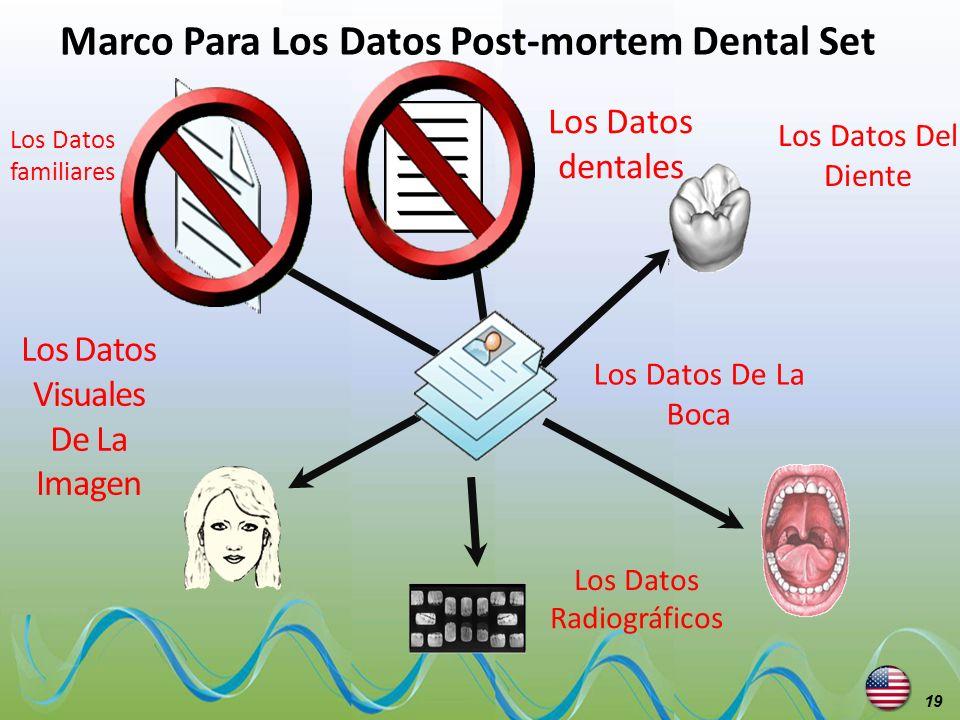 Marco Para Los Datos Post-mortem Dental Set Los Datos Visuales De La Imagen Los Datos dentales Los Datos Del Diente Los Datos De La Boca Los Datos Rad