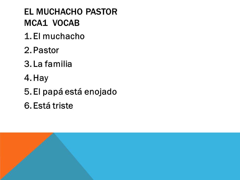 1.El muchacho 2.Pastor 3.La familia 4.Hay 5.El papá está enojado 6.Está triste EL MUCHACHO PASTOR MCA1 VOCAB