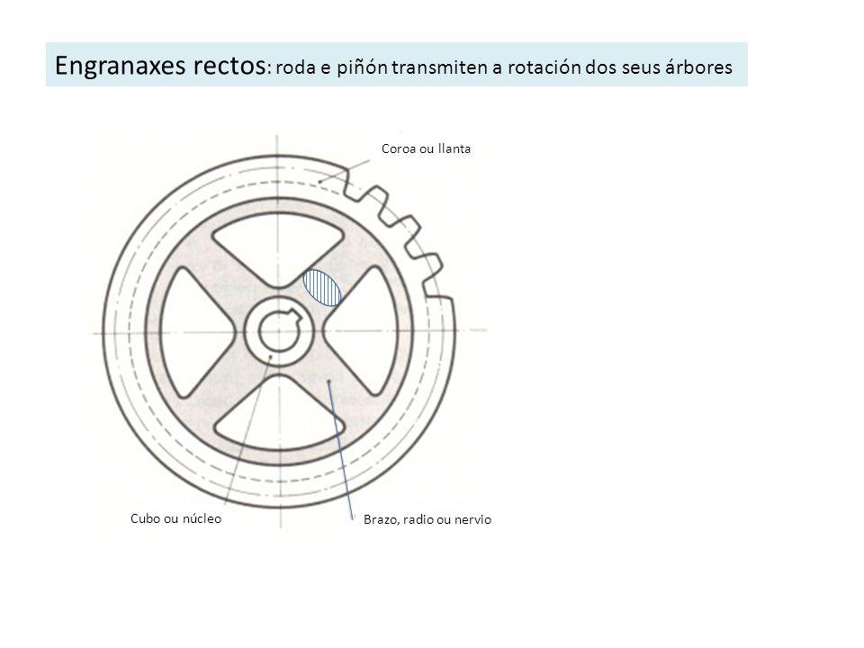 Engranaxes rectos : roda e piñón transmiten a rotación dos seus árbores Coroa ou llanta Brazo, radio ou nervio Cubo ou núcleo