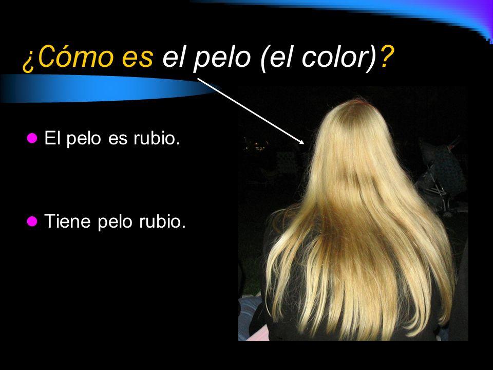 ¿C ómo es el pelo (el color)? El pelo es rubio. Tiene pelo rubio.