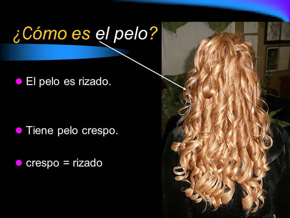 ¿C ómo es el pelo? El pelo es rubio y rizado. Tiene pelo rubio y crespo.