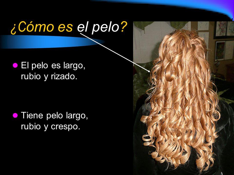 ¿C ómo es el pelo? El pelo es largo, rubio y rizado. Tiene pelo largo, rubio y crespo.