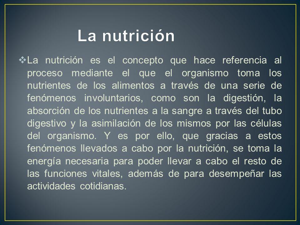 La nutrición es el concepto que hace referencia al proceso mediante el que el organismo toma los nutrientes de los alimentos a través de una serie de