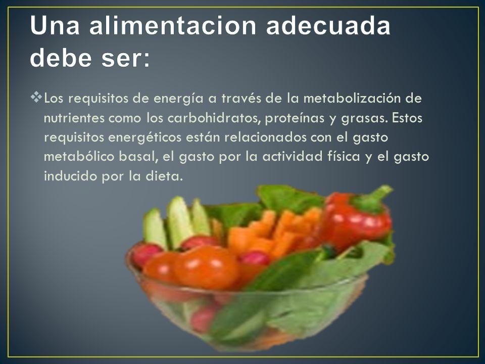 Los requisitos de energía a través de la metabolización de nutrientes como los carbohidratos, proteínas y grasas. Estos requisitos energéticos están r