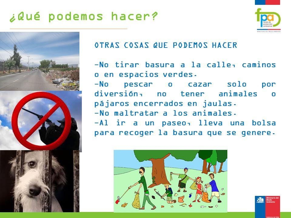 OTRAS COSAS QUE PODEMOS HACER -No tirar basura a la calle, caminos o en espacios verdes. -No pescar o cazar solo por diversión, no tener animales o pá