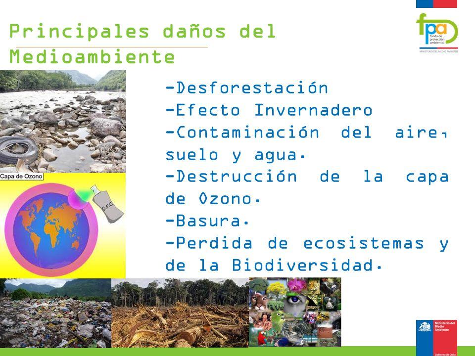 -Desforestación -Efecto Invernadero -Contaminación del aire, suelo y agua. -Destrucción de la capa de Ozono. -Basura. -Perdida de ecosistemas y de la