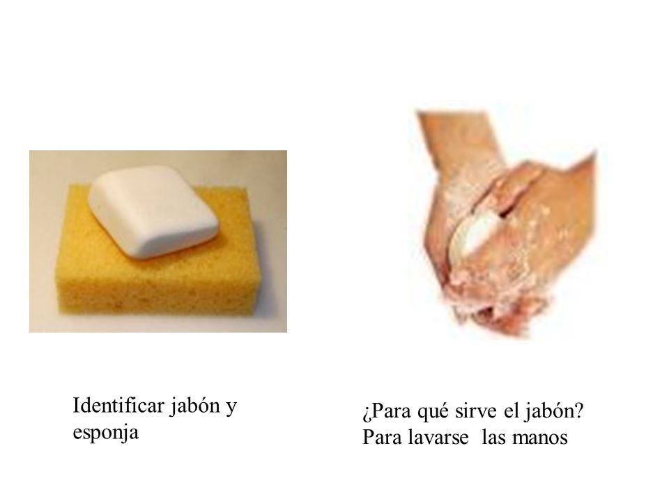 Identificar jabón y esponja ¿Para qué sirve el jabón? Para lavarse las manos