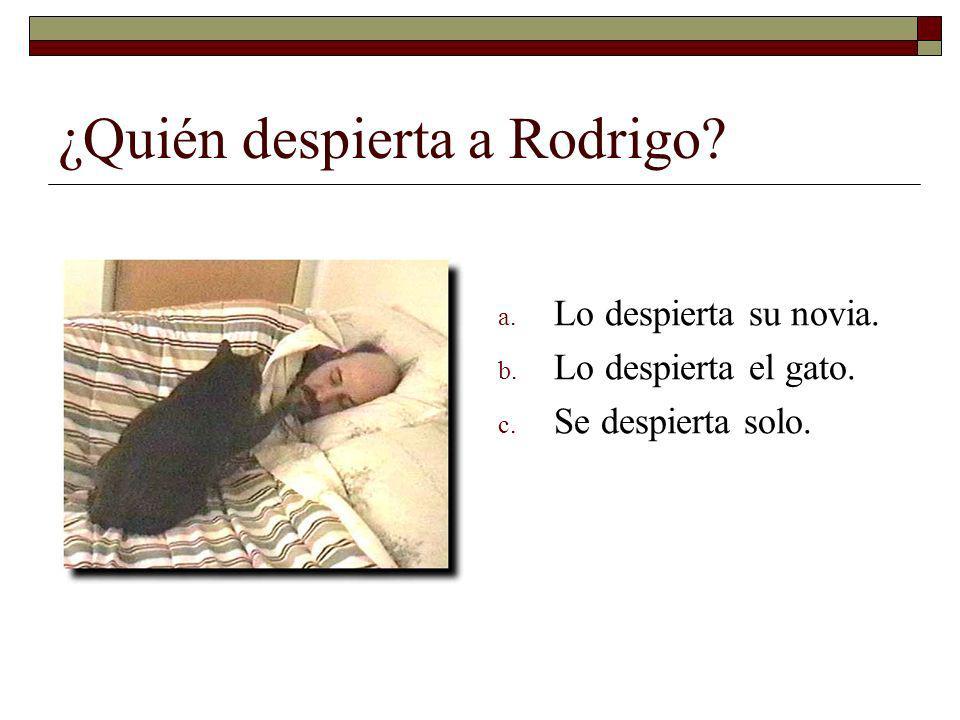 ¿Quién despierta a Rodrigo.a. Lo despierta su novia.