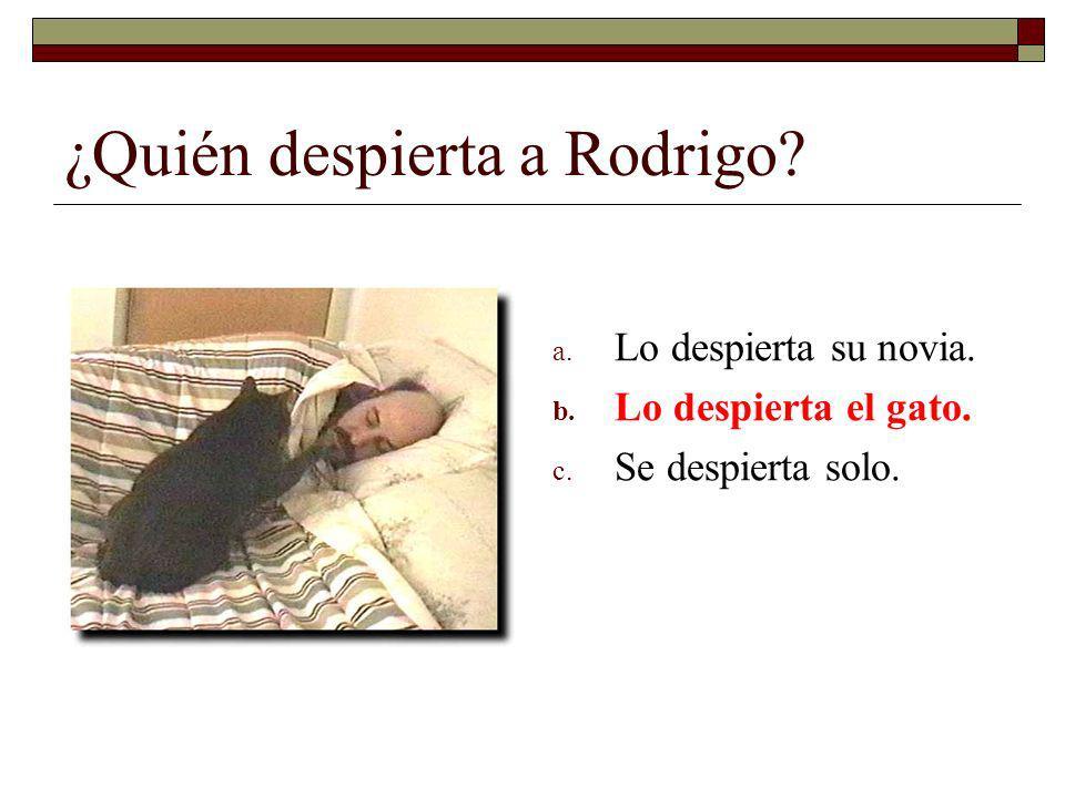 ¿Quién despierta a Rodrigo? a. Lo despierta su novia. b. Lo despierta el gato. c. Se despierta solo.