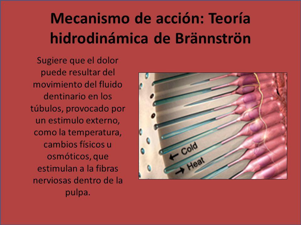 Mecanismo de acción: Teoría hidrodinámica de Brännströn Sugiere que el dolor puede resultar del movimiento del fluido dentinario en los túbulos, provo