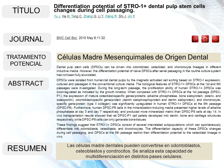 TÍTULO ABSTRACT RESUMEN Las células madre dentales pueden convertirse en odontoblastos, osteoblastos y condrocitos. Se analiza esta capacidad de multi