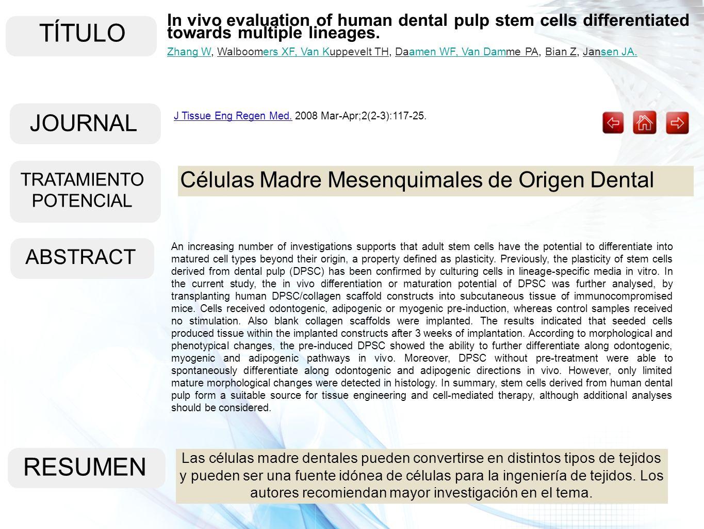 TÍTULO ABSTRACT RESUMEN Las células madre dentales pueden convertirse en distintos tipos de tejidos y pueden ser una fuente idónea de células para la