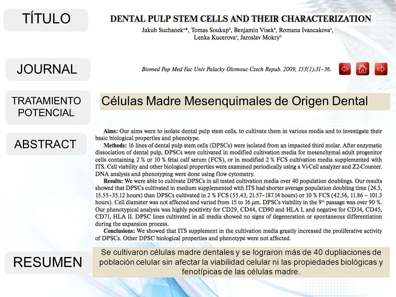 TÍTULO ABSTRACT RESUMEN Se cultivaron células madre dentales y se lograron más de 40 dupliaciones de población celular sin afectar la viabilidad celul