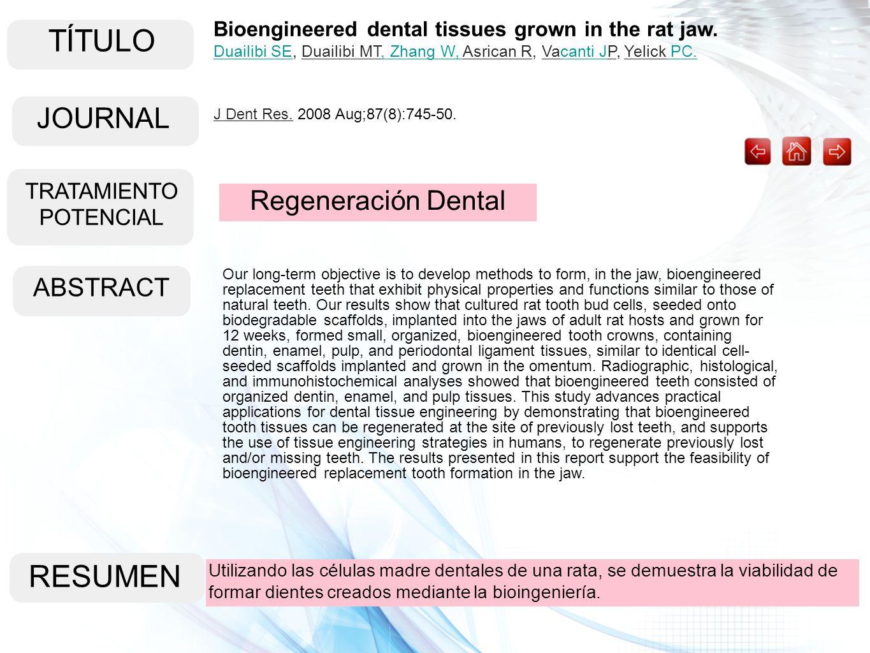 TÍTULO ABSTRACT RESUMEN Bioengineered dental tissues grown in the rat jaw. Duailibi SEDuailibi SE, Duailibi MT, Zhang W, Asrican R, Vacanti JP, Yelick