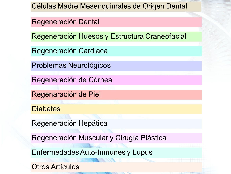 Células Madre Mesenquimales de Origen Dental Regeneración Dental Regeneración Huesos y Estructura Craneofacial Regeneración Cardiaca Problemas Neuroló