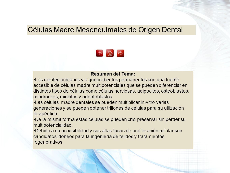 Células Madre Mesenquimales de Origen Dental Resumen del Tema: Los dientes primarios y algunos dientes permanentes son una fuente accesible de células