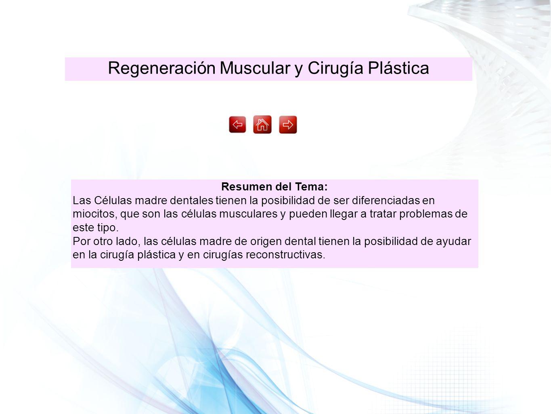 Regeneración Muscular y Cirugía Plástica Resumen del Tema: Las Células madre dentales tienen la posibilidad de ser diferenciadas en miocitos, que son