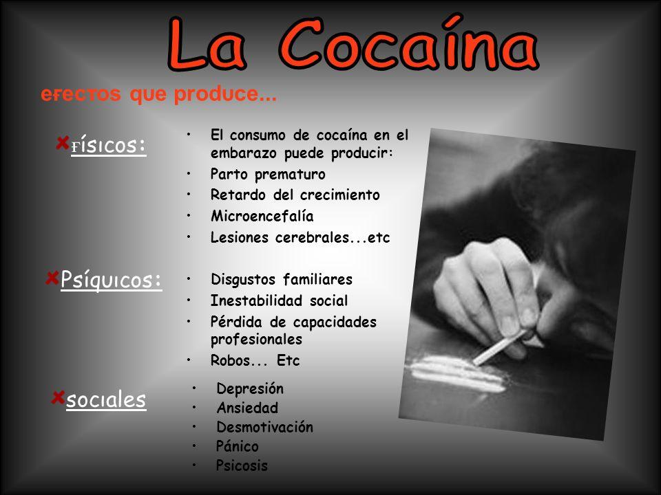 Depresión Ansiedad Desmotivación Pánico Psicosis El consumo de cocaína en el embarazo puede producir: Parto prematuro Retardo del crecimiento Microenc