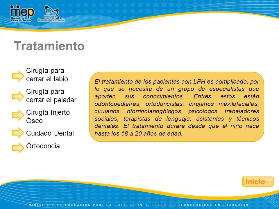 Cirugía para cerrar el labio Cirugía para cerrar el paladar Cirugía Injerto Óseo Cuidado Dental Ortodoncia Tratamiento El tratamiento de los pacientes