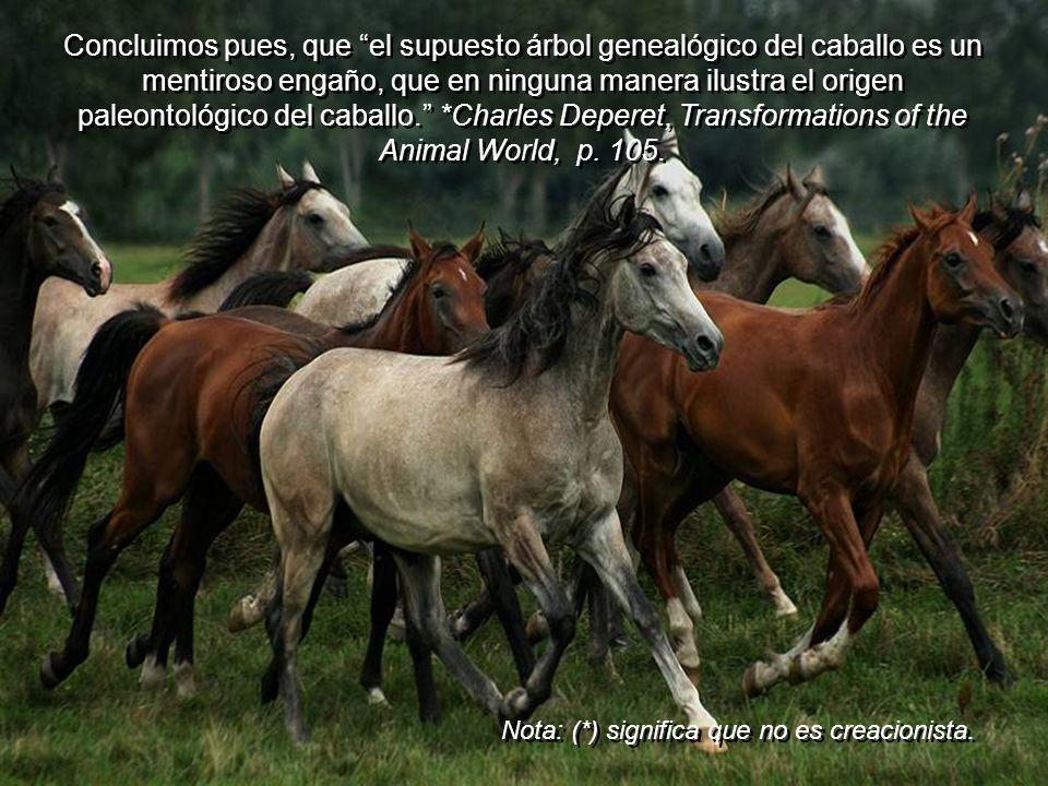 Algunos de los casos clásicos de cambios Darwinianos, como la evolución del caballo, ha tenido que ser descartado como resultado de la más detallada i