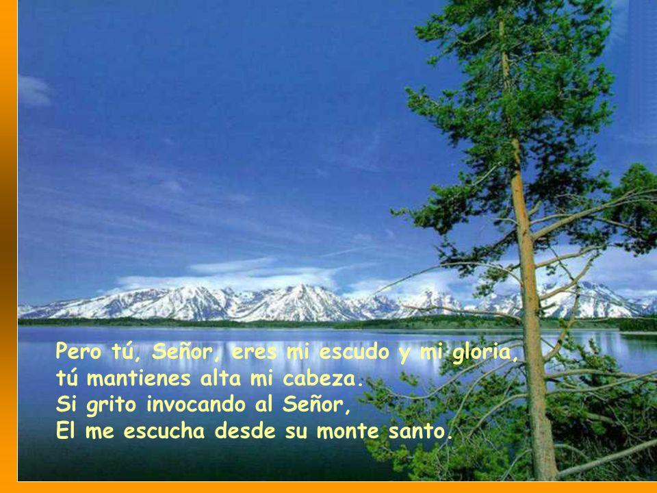 Señor, cuántos son mis enemigos, cuántos se levantan contra mí; cuántos dicen de mí: ya no lo protege Dios .