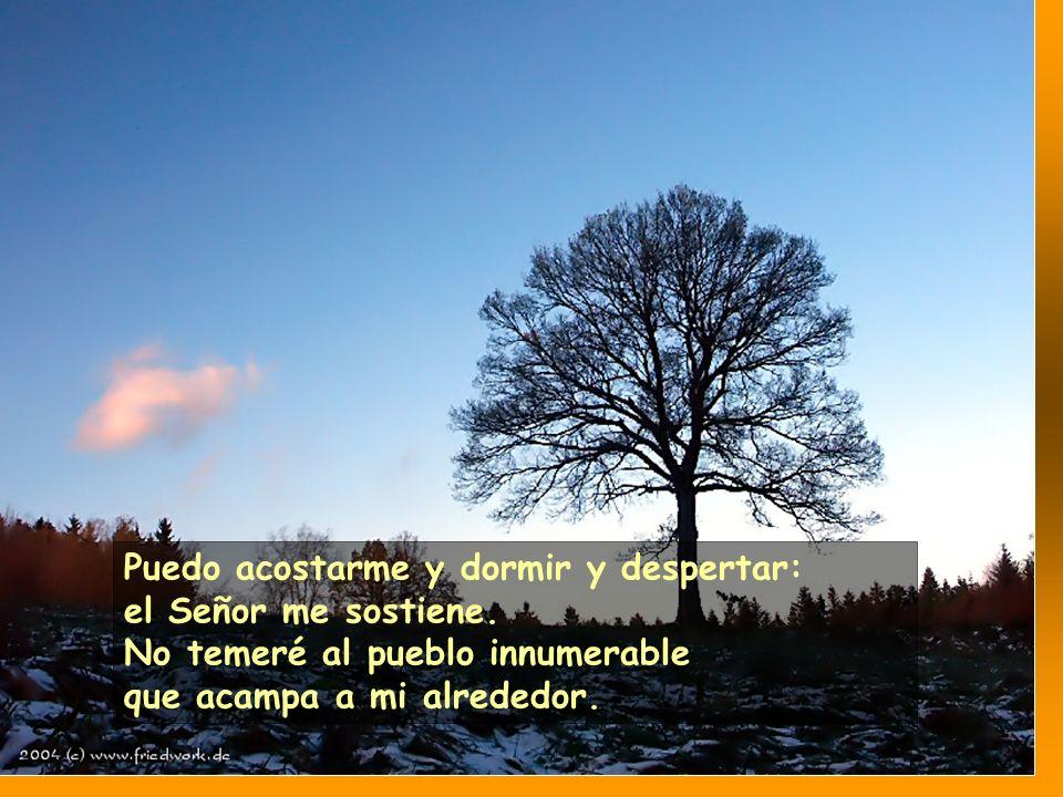 Pero tú, Señor, eres mi escudo y mi gloria, tú mantienes alta mi cabeza.