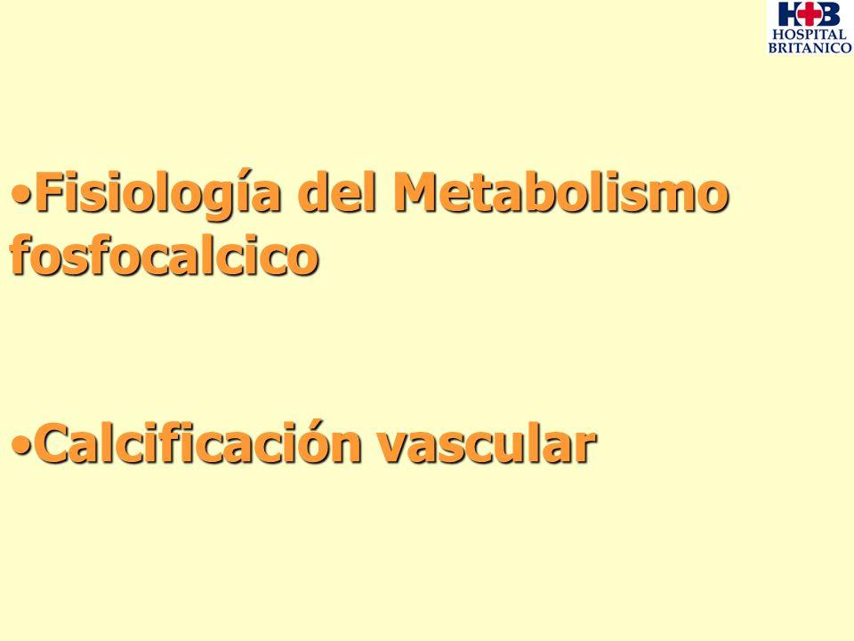 Fisiología del Metabolismo fosfocalcicoFisiología del Metabolismo fosfocalcico Calcificación vascularCalcificación vascular