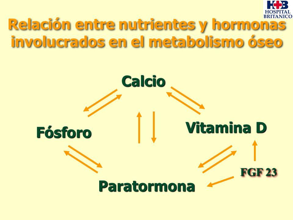 Metabolismo Normal