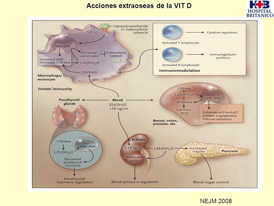 NEJM 2008 Acciones extraoseas de la VIT D