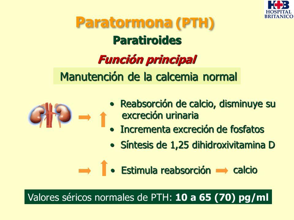 Paratormona (PTH) Paratiroides Manutención de la calcemia normal Manutención de la calcemia normal Incrementa excreción de fosfatos Incrementa excreci