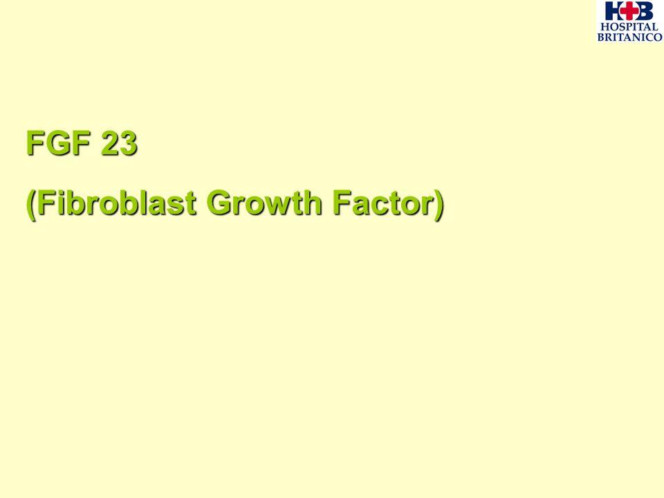 FGF 23 (Fibroblast Growth Factor)