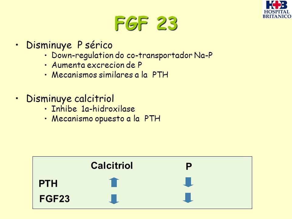 FGF 23 Disminuye P sérico Down-regulation do co-transportador Na-P Aumenta excrecion de P Mecanismos similares a la PTH Disminuye calcitriol Inhibe 1a