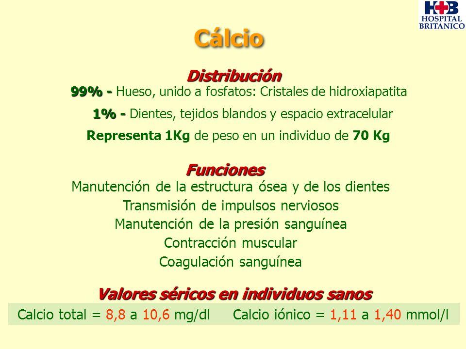 Heces 800 mg/día CALCIO EXTRACELULAR Filtración 10.000 mg/día Balance de Calcio Ingesta de calcio 1000 mg/día Secreción 100 mg/día Absorción 300 mg/día Reabsorción 9.800 mg/dia Incorporación 500 mg/día Reabsorción 300 mg/día Orina 200 mg/día