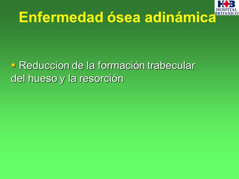 Reduccion de la formación trabecular del hueso y la resorción Reduccion de la formación trabecular del hueso y la resorción Enfermedad ósea adinámica