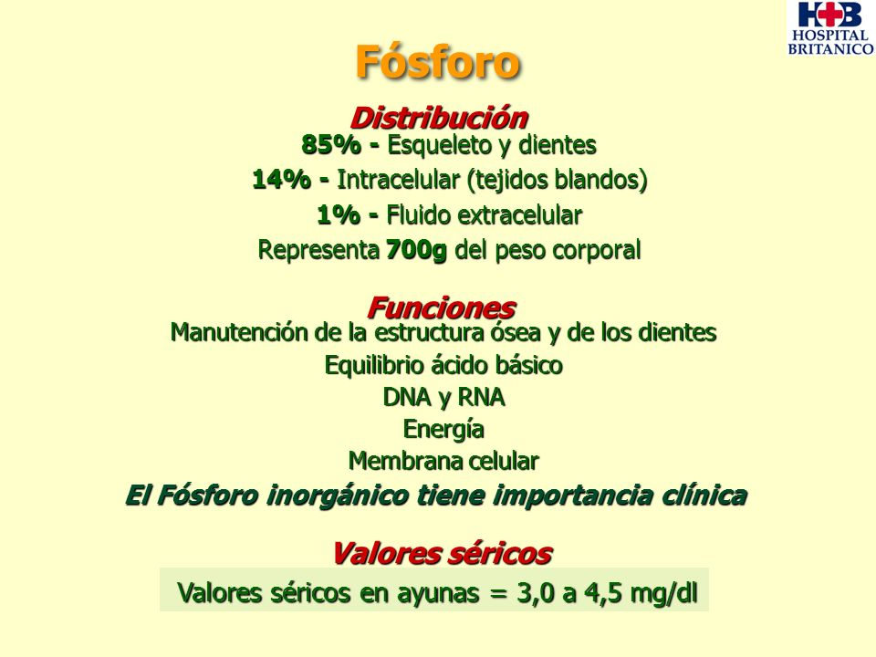 85% - Esqueleto y dientes 14% - Intracelular (tejidos blandos) 1% - Fluido extracelular Representa 700g del peso corporal Distribución Fósforo Manuten