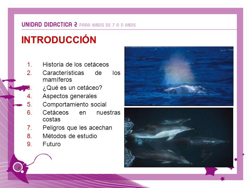 2 1.Historia de los cetáceos 2.Características de los mamíferos 3.¿Qué es un cetáceo? 4.Aspectos generales 5.Comportamiento social 6.Cetáceos en nuest
